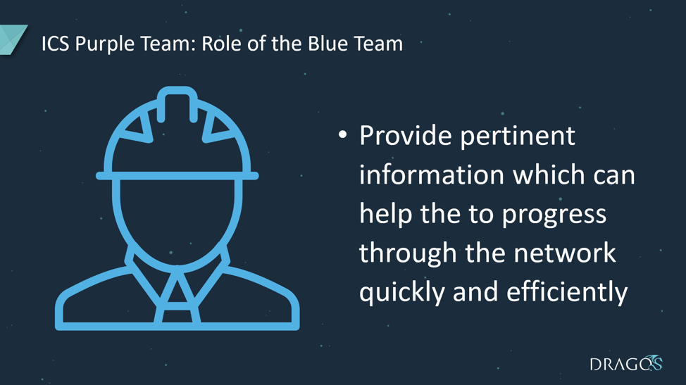 The role of the Blue Team